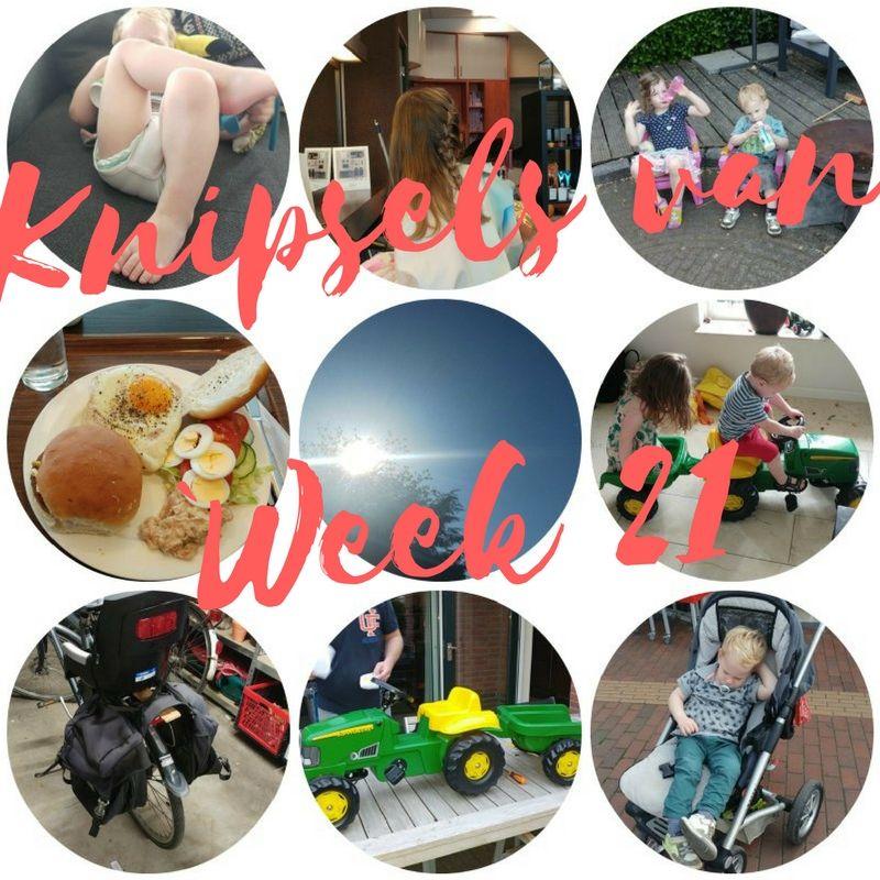 [:nl]Knipsels van week 21: 3 verjaardagen, 65 km gefietst en hittegolf[:en]Knipsels van week 21[:]