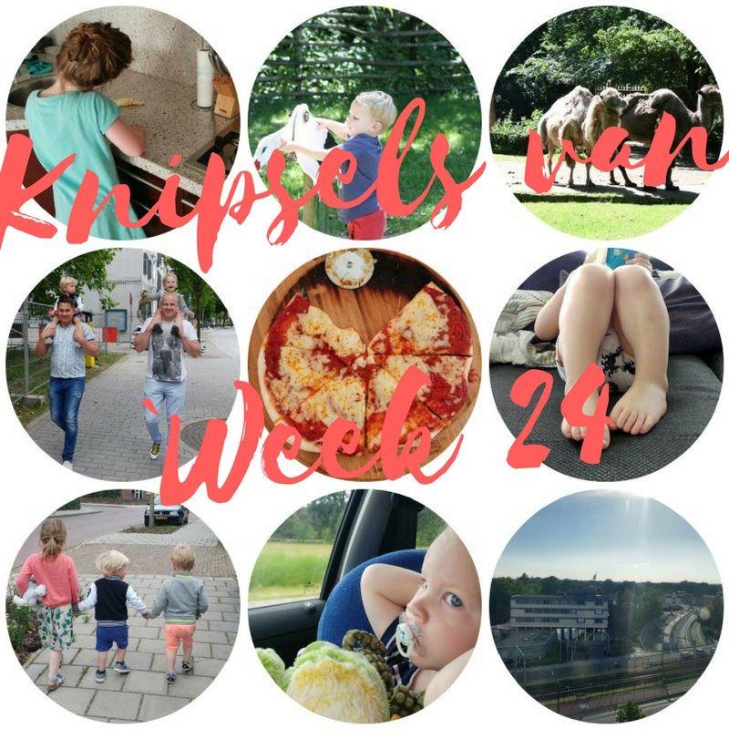 [:nl]Knipsels van week 24: schoolreisje, dierentuin, bloggersavond en vaderdag[:]