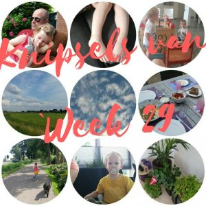 Knipsels van week 29