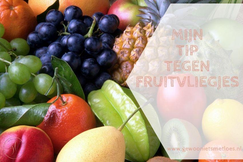 Mijn tip tegen fruitvliegjes | Huishouden