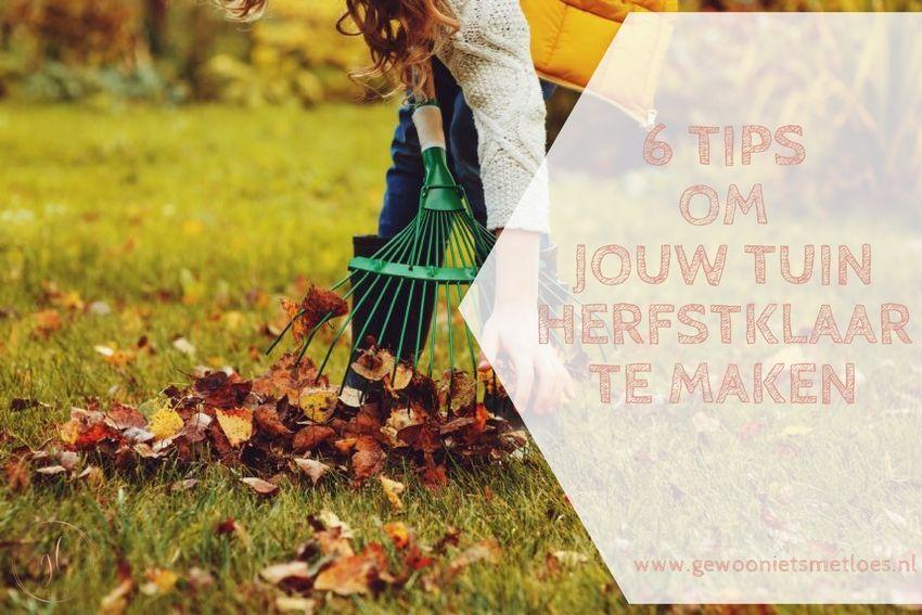 6 tips om jouw tuin herfstklaar te maken