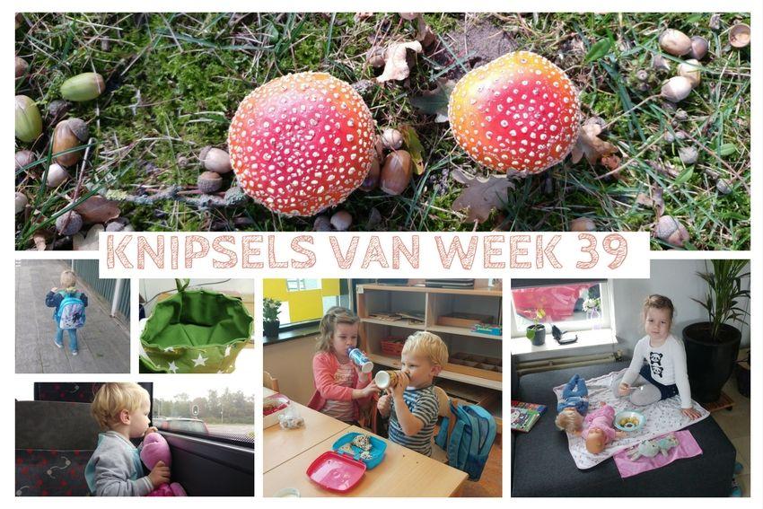 Knipsels van week 39: rood met witte stippen, geen fijne griep en familiedag