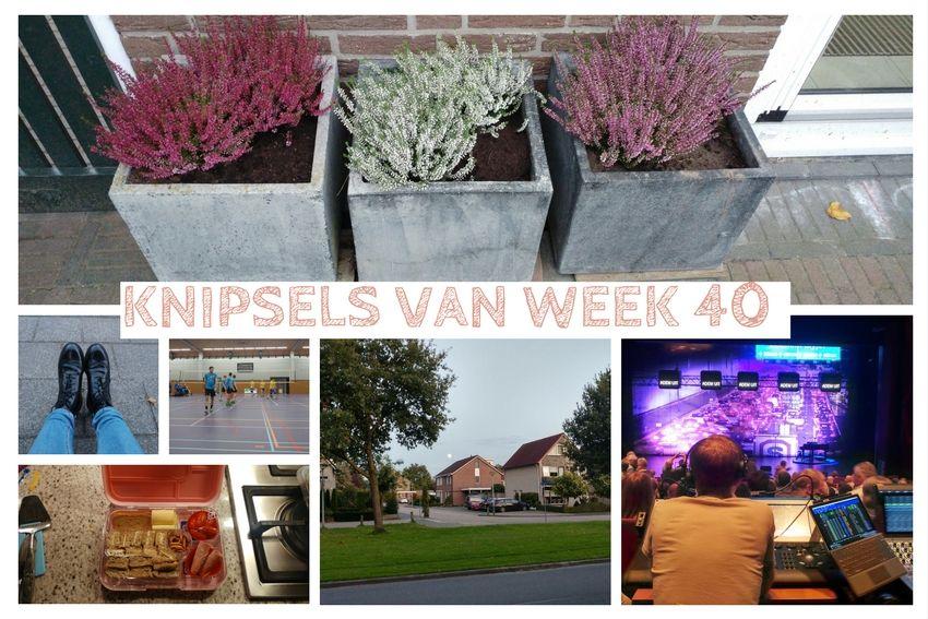 [:nl]Knipsels van week 40: eten bij Ikea, Jochem Myjer en pizza op de cobb[:en]Knipsels van week 40:[:]