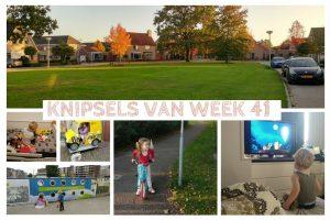 Knipsels van week 41