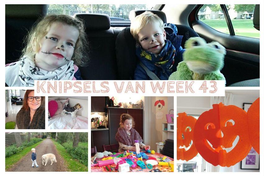 [:nl]Knipsels van week 43: logeerhond, 4 dagen migraine en halloween[:]