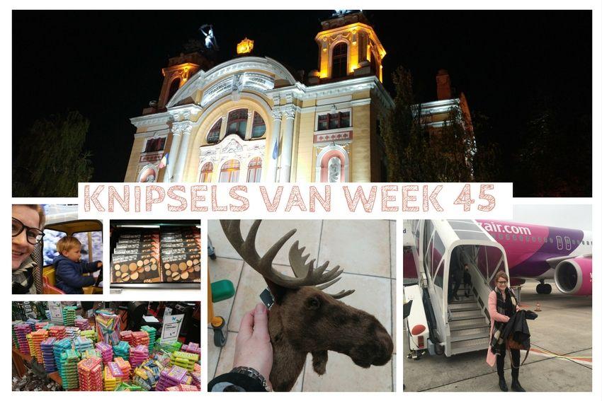 Knipsels van week 45: bezoek aan Roemenië, schapen drijven en Twentsche Foodhal