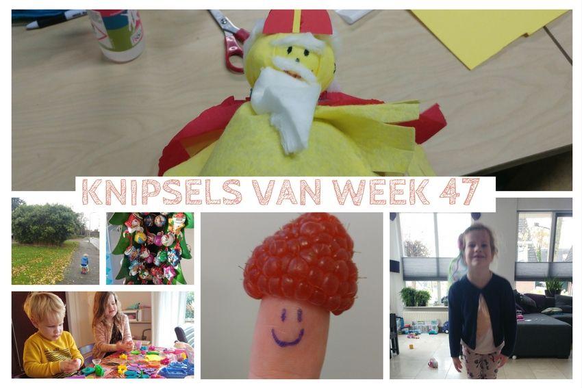 Knipsels van week 47: frambozen, sint shoppen en mascotte Weppie