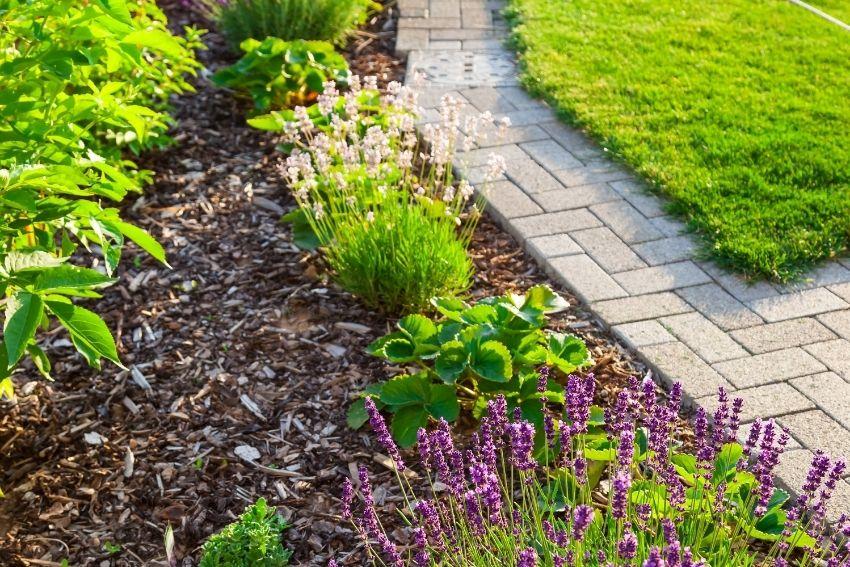 boomschors in je tuin (2)